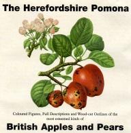 The Herefordshire Pomona