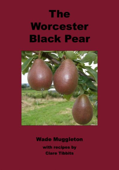 The Worcester Black Pear by Wade Muggleton